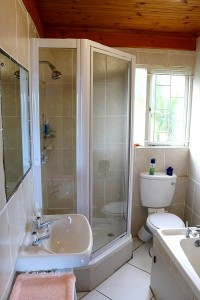 ground-floor-bathroom
